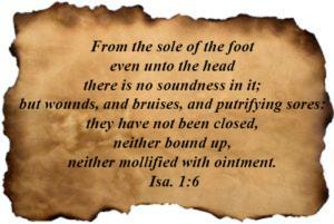 Bible Verses : Isaiah 01:06